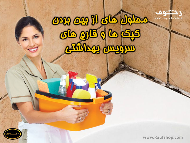 محلول از بین بردن کپک سرویس بهداشتی